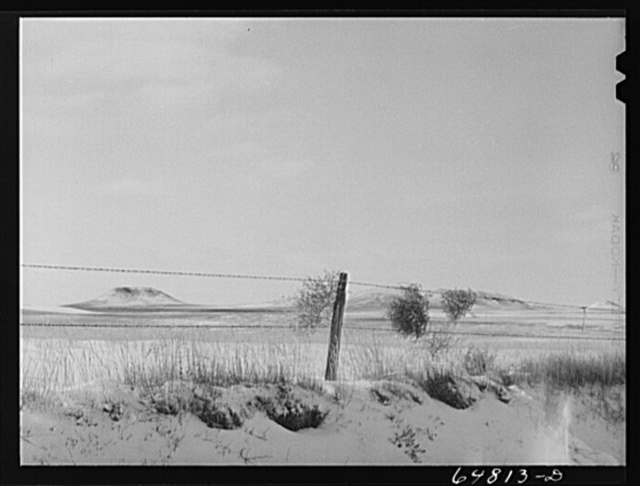 Adams County, North Dakota. Barbed wire, buttes and tumbleweed