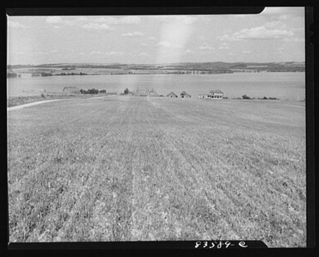 Aroostook County, Maine. Farmlands which Belonie Dufour lost when the price of potatoes went down
