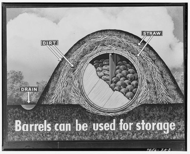 Barrels make satisfactory storage. Fill a barrel with vegetables or fruit and lay it lengthwise. Cover with a layer of straw, then a layer of dirt, then another layer of straw and a layer of dirt. Put straw in the end of the barrel before putting the cover in place. Dig a ditch around the mounded barrel to serve as a drain