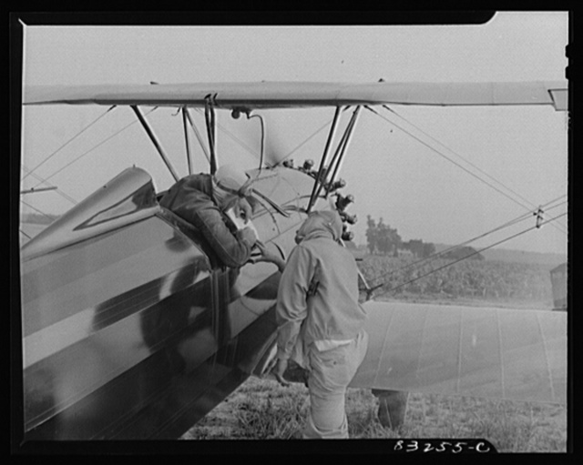 Bridgeton, New Jersey. Seabrook Farm. Pilots studying maps to locate fields for dusting. Dust or insecticide is spread by low flying planes onto crops to control various insect pests