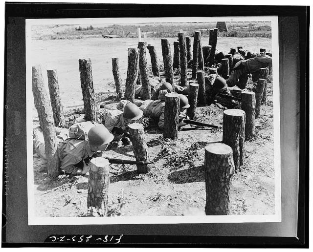 """Camp Edwards, Massachusetts. This """"asparagus patch,"""" consisting of pine logs stuck in the ground, is an obstacle that looks easy but in reality is a backbreaker. Men must be able to crawl for some distance, twisting and turning like a snake, to complete this course, for the logs are set in a straight line"""