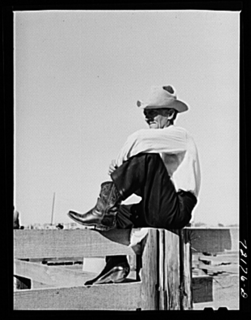 Cowboy. Imperial County Fair, California