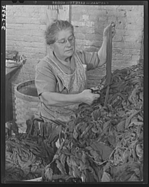 Discarded stockings go to war. Removing the cotton parts from discarded silk stockings before processing into powder bags. Mrs. Mary Gladu, age fifty-eight, cuts and sorts the material