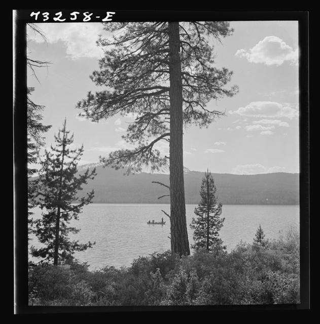 Douglas County, Oregon. Diamond Lake resort area