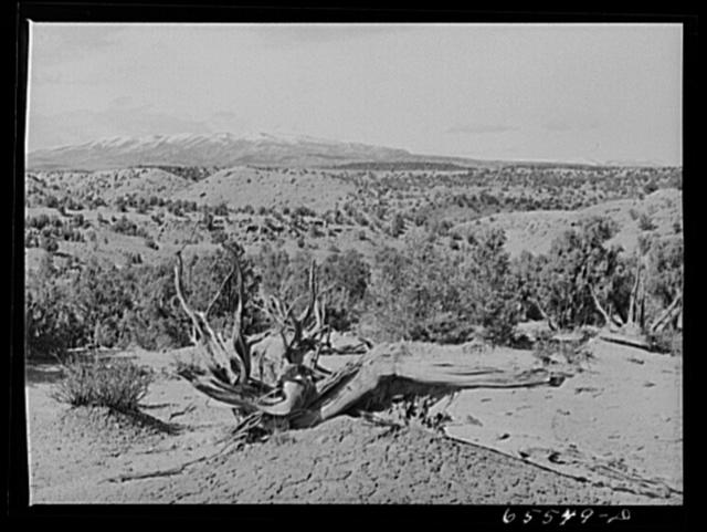 Duchesne County, Utah. Desert country