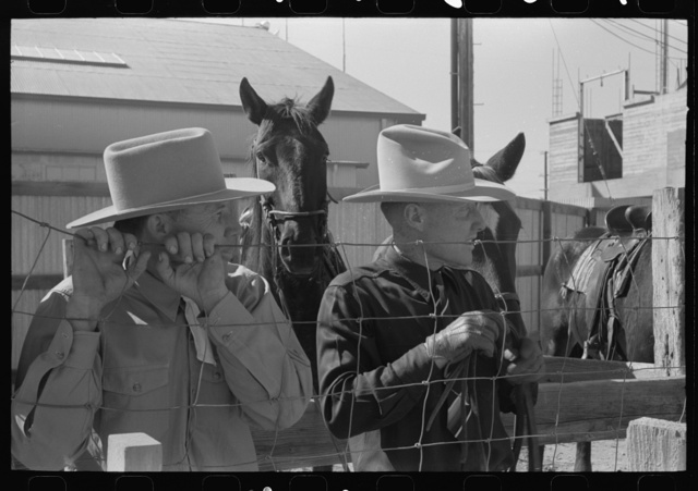 El Centro, California (vicinity). Cattlemen at the Imperial County Fair