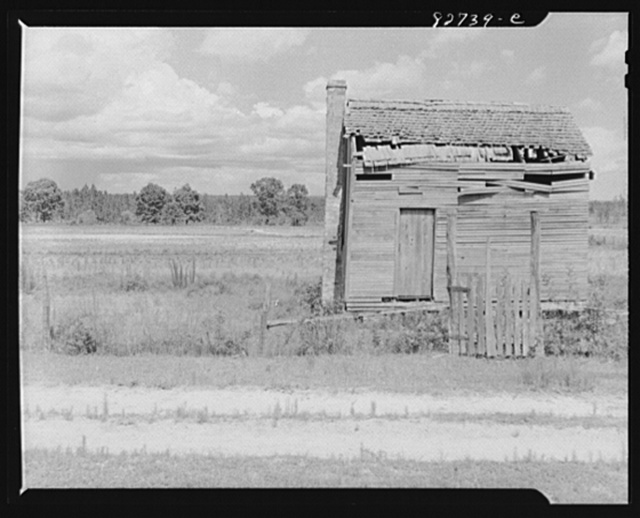 Escambia Farms, Florida (vicinity). Behind this skeleton of a sharecropper's house bordering on Escambia Farms are the reasons for its abandonment: poor soil, badly eroded