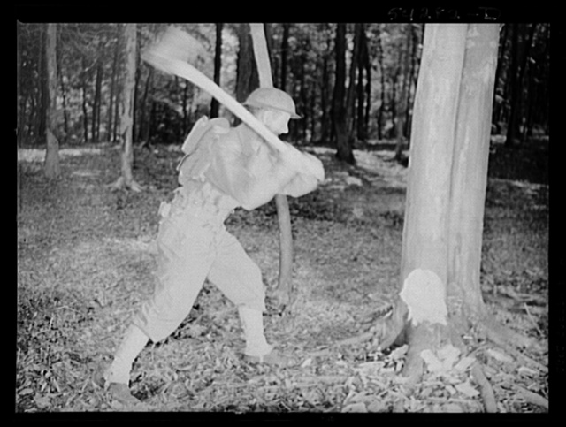 Fort Belvoir, Virginia. A soldier chopping down a tree