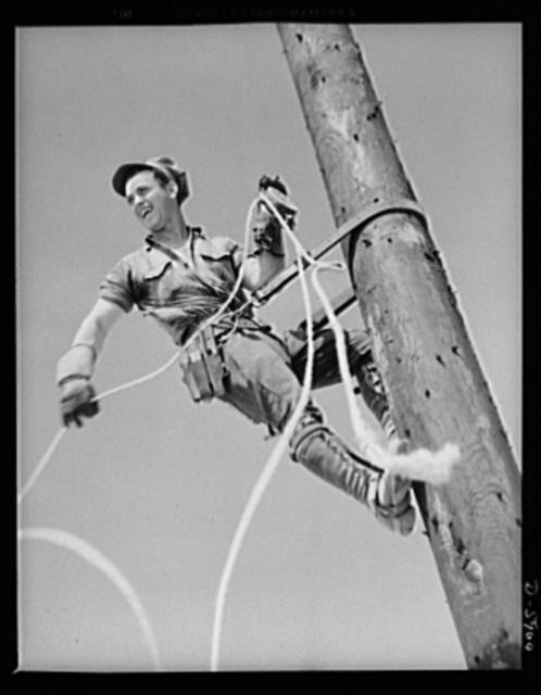 "Fort Knox. Electric power line construction. The electrical industry of America relies largely on the ""broadback"" or lineman, to bring its power to the places where it is needed. This man is working on the construction of a transmission line to Fort Knox, Kentucky, where American soldiers are training for the battles of democracy"