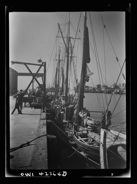 Gloucester, Massachusetts. At the docks crew members prepare their trawlers for a week's voyage. Most of the fishermen come from a line of fishermen that dates back for centuries