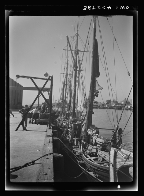 Gloucester, Massachusetts. At the docks crew members prepare their trawlers for a week's voyage. Most of the fishermen in the city come from a line of fishermen that dates back for centuries