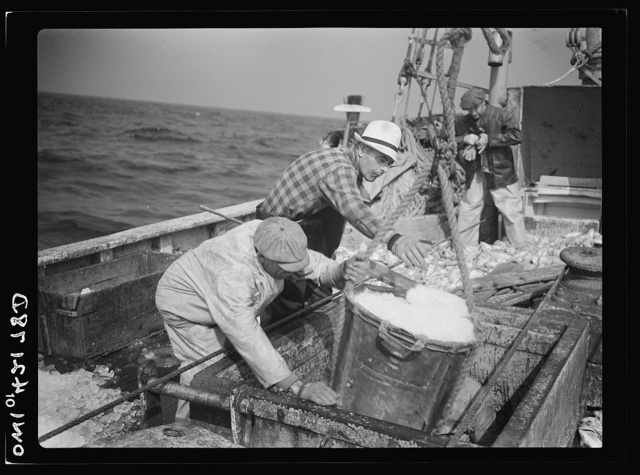 """Gloucester, Massachusetts. Crew members throw overboard excess ice from the """"Old Glory's"""" hold. Fishermen allow a proportion of the one ton of ice to three tons of fish. When the catch is unusally large, as on this trip, some ice is removed to make room for the fish"""