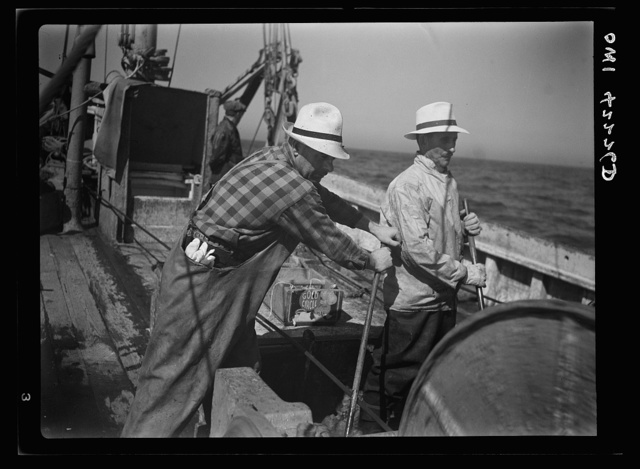 Gloucester, Massachusetts. Two Gloucester fishermen on a fishing boat