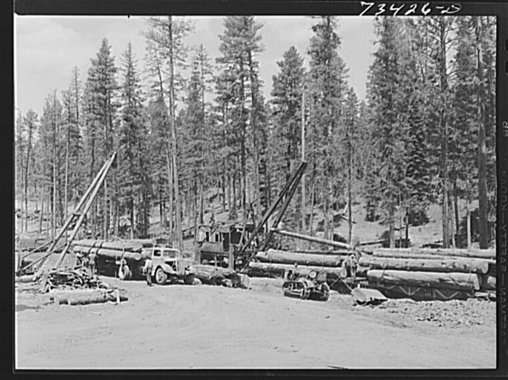 Grant County, Oregon. Malheur National Forest. Loading logs from trucks to flatcars