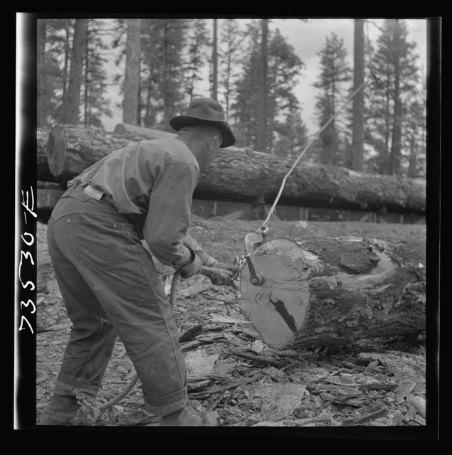 Grant County, Oregon. Malheur National Forest. Lumberjack putting hook into log which will be loaded onto flatcar