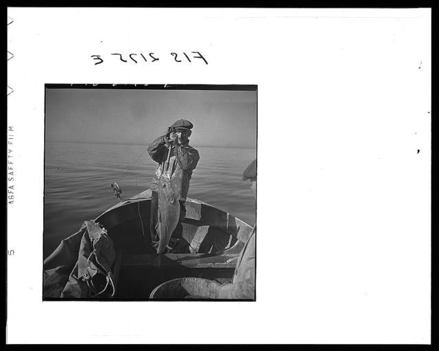 Hauling in a cod aboard a Portuguese fishing dory off Cape Cod, Massachusetts