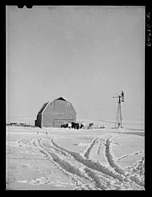 Hettinger County, North Dakota. Farmyard