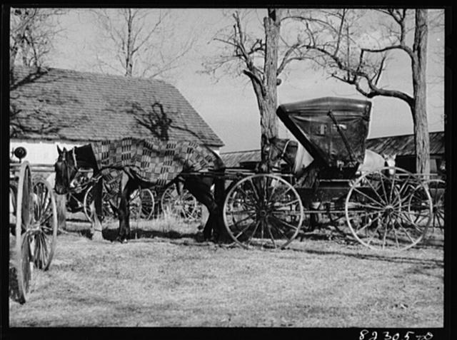 Hinkletown, Pennsylvania (vicinity). Mennonite wagon waiting outside church