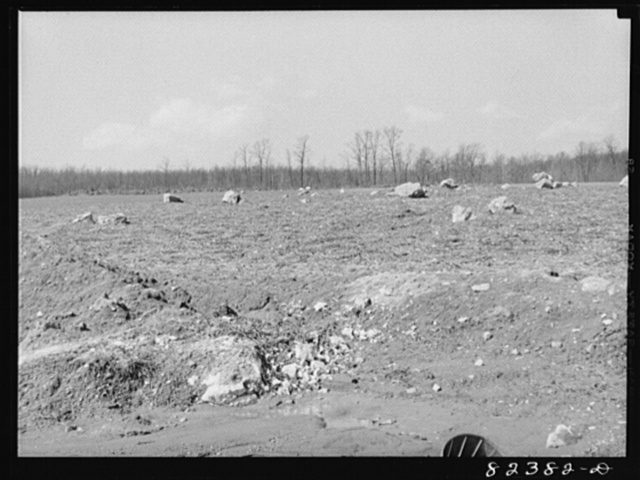 Honey Brook, Pennsylvania (vicinity). Rocks in the process of being removed from hand by Morris Zook Jr., FSA (Farm Security Administration) tenant purchase client who hired bulldozer at twenty-five dollars a day to raise the rocks. Now they will be dynamited and removed in pieces