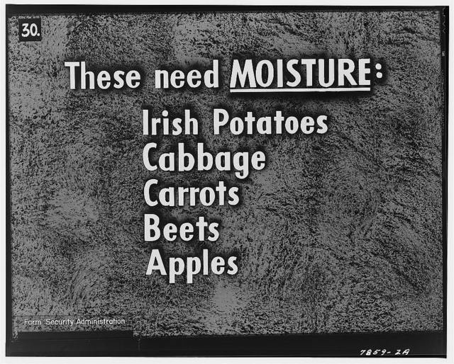 Irish potatoes, cabbage, carrots, beets and apples should be kept cool and moist, but must not freeze. Cool cellars with earthen floors help to keep these foods moist enough that they do not shrivel. They may be packed in boxes of damp sand