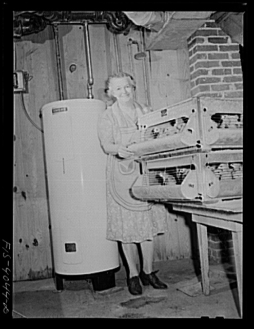 Knox County, Tennessee (Tennessee Valley Authority (TVA)). Mrs. Wiegel, farm wife, with electric brooder and hot water heater