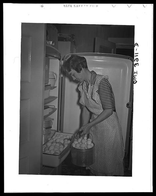 Lauderdale County, Alabama. Tennessee Valley Authority (TVA). An electric refrigerator helps Mrs. Case keep eggs fresh