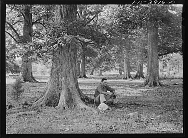 Lauderdale County, Alabama. Tennessee Valley Authority (TVA). Julien H. Case resting in the shade of one of the 100 year-old white oaks on his farm