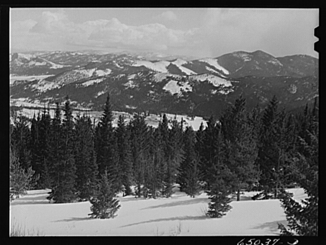 Lewis and Clark County, Montana. Helena National Forest