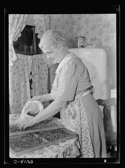 Mrs. Frank Rogers storing dried beans in muslin bags