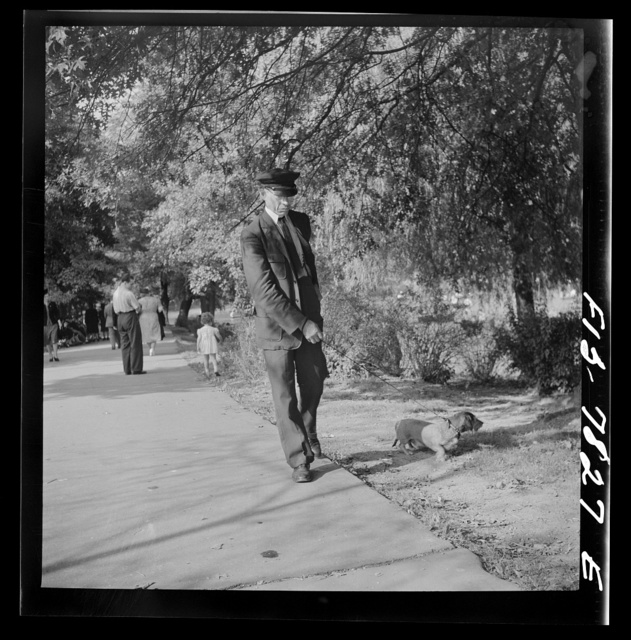 New York, New York. Negro chauffer walking a dachshund in Central Park
