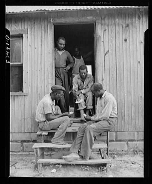 Newport, New Jersey (vicinity). Pickers who live on John Hanby's farm