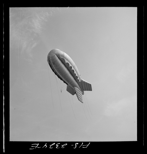 Parris Island, South Carolina. Tactical formations of barrage balloons prevent dive bombing and the strafing of important ground installations. The Leathernecks are developing an excellent technique in this method of protecting important locations from enemy aircrafts