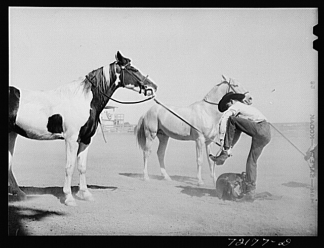 Part of novelty race at Imperial County Fair, California