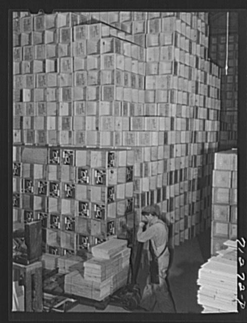 "Petaluma, Sonoma County, California. Crates for eggs. Petaluma, which is the center of the intensive egg producing area, calls itself ""the world's egg basket"""