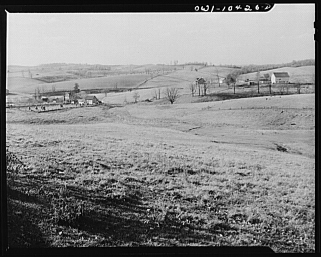 """Pittsburgh, Pennsylvania (vicinity). Montour no. 4 mine of the Pittsburgh Coal Company. Above the coal seam, dairy and farm lands lay undisturbed. Only occasionally there will be """"sinks"""" and large """"pot holes"""" caused by the collapsing of """"mined out"""" areas of the seam"""