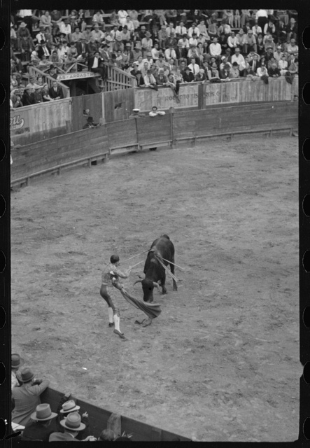 Placing the sword for the kill, bullfight, Matomoros, Mexico