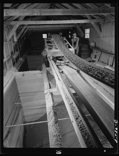"""Production. Lead. Belt conveyor discharging lead-silver ore into the ore bins of the concentrator at Creede, Colorade where old lead mines have been reopened. Creede, for many years a """"ghost town,"""" has resumed the activities that made it an important lead-producing center years ago, and is now producing much metal vitally needed for the war effort"""