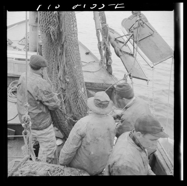 Provincetown, Massachusetts. Fishermen aboard the Portuguese drag trawler, Francis and Marion, sending a net
