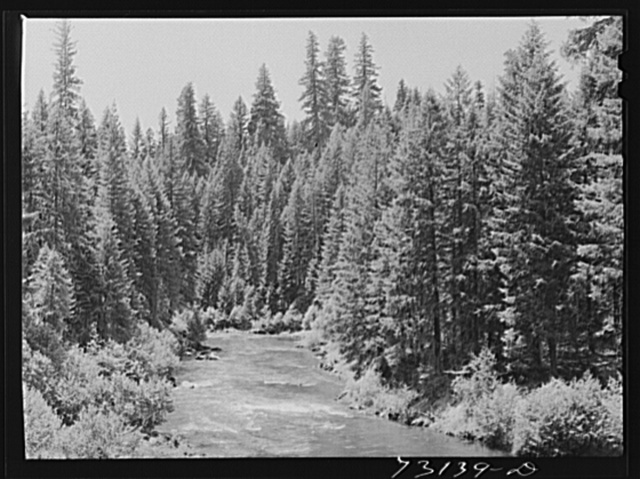 Rogue River National Forest, Jackson County, Oregon. The Rogue River, a fishing stream