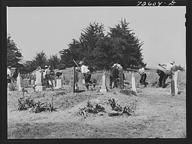San Benito County, California. Japanese-Americans, waiting for evacuation orders, clean their cemetery