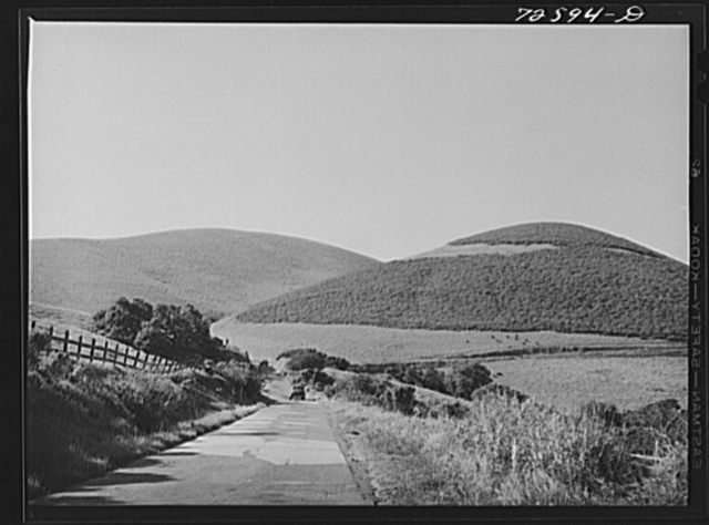 San Benito County, California. Road through the low hills