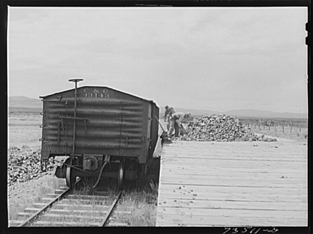 Seneca, Oregon. Loading chrome ore into freight car
