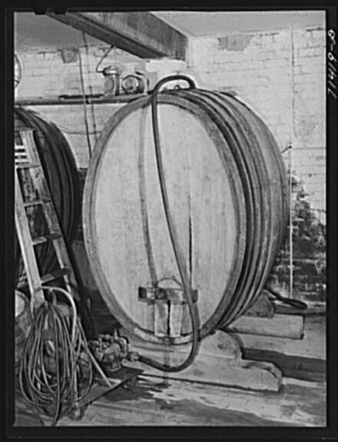Sonoma County, California. French type of cask in which wine ages. The finest of American dry red wines comes from this county