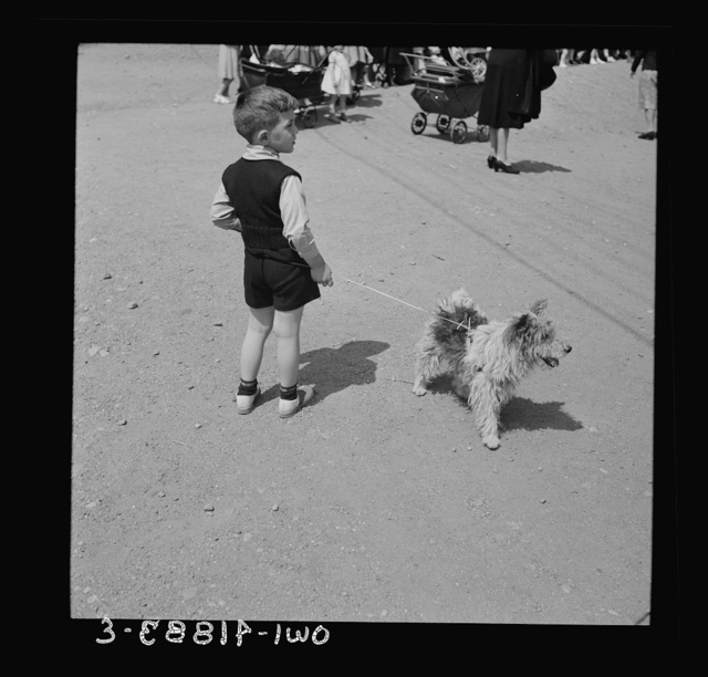 Southington, Connecticut.  A small boy