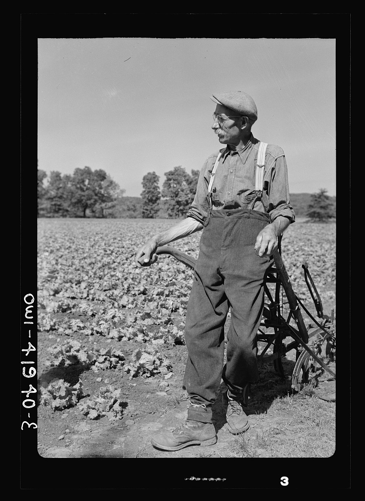 Southington, Connecticut. Gus Worke, a farmer who came from Germany forty years ago