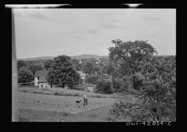 Southington, Connecticut. Orchards and farmland in the surroundings of Southington