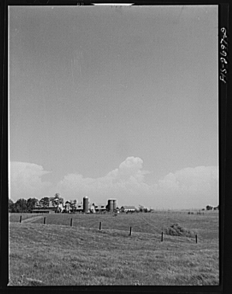 The dairy husbandry farm at Iowa State College, used for both teaching and experimental purposes. Ames, Iowa