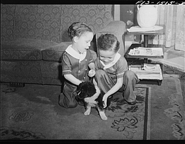 "The Sounders children playing with their puppy ""Blitz."" Chicago, Illinois"