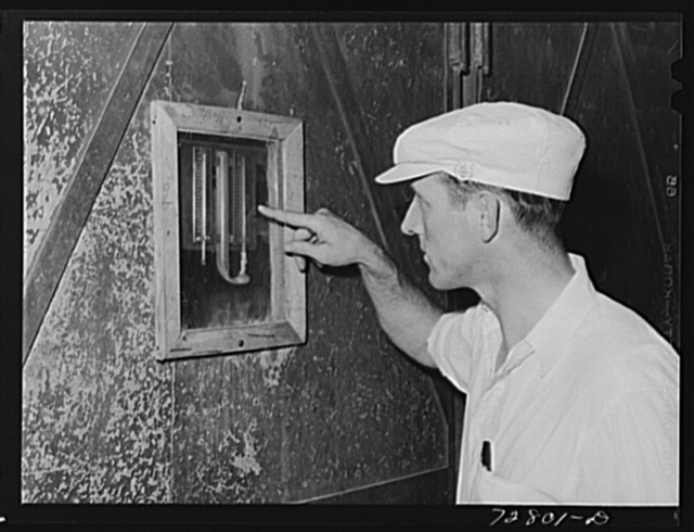 Turlock, California. Checking temperature of drying tunnel in dehydrating plant