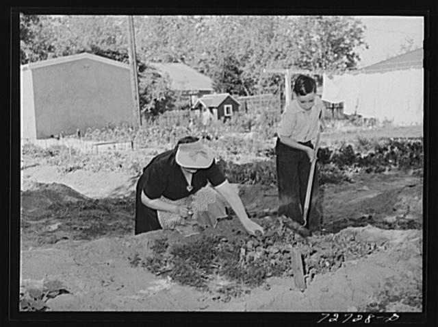 Turlock, California. Housewife helps her son with his garden